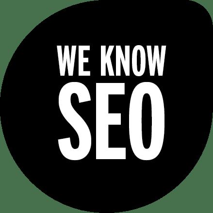 google optimalisatie en seo haarlem